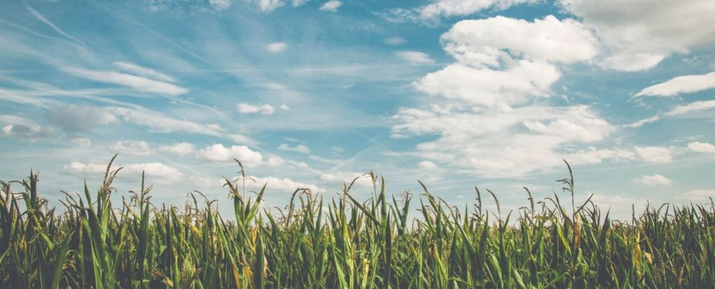 Cloud and Ground are Ready to Talk - Cloud Farming